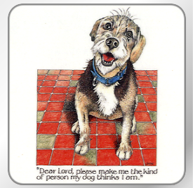 Online Catalogue Table Mats And Coasters